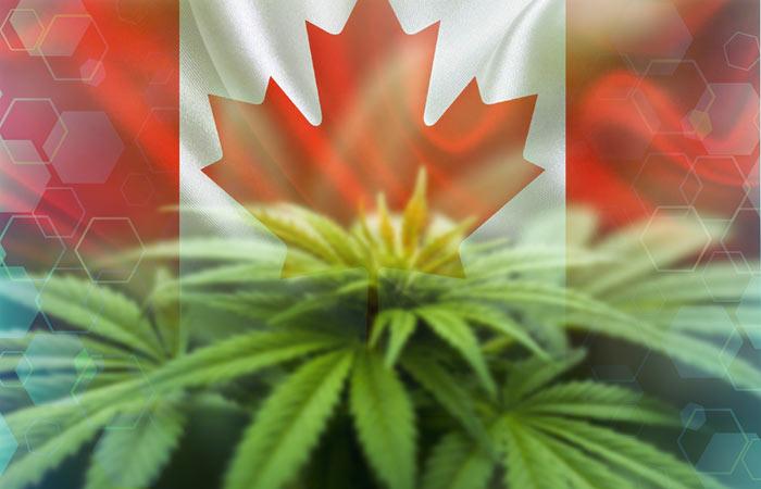 Legalizan marihuana recreacional en Canadá