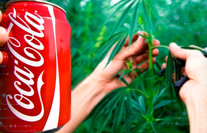 Coca-Cola analiza desarrollar bebidas con cannabis para tratar dolores musculares