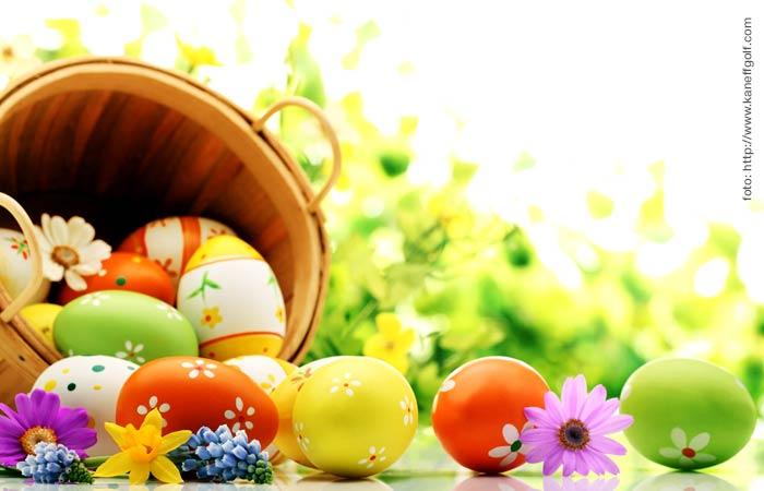 Conejos, huevos y la semana mayor